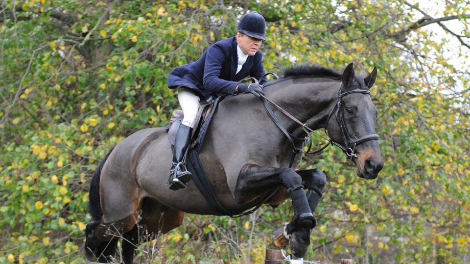 Nicky Hanbury How to teach a horse to jump a hedge