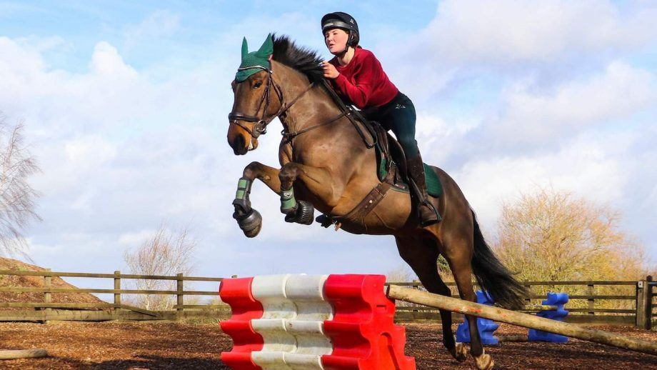 Horse rider injured in road incident