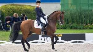 Edward Gal riding KWPN stallion Lingh at 2006 World Equestrian Games in Aachen.
