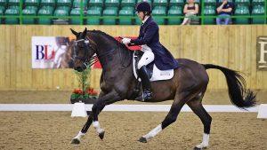 Pammy Hutton riding Belmondo II