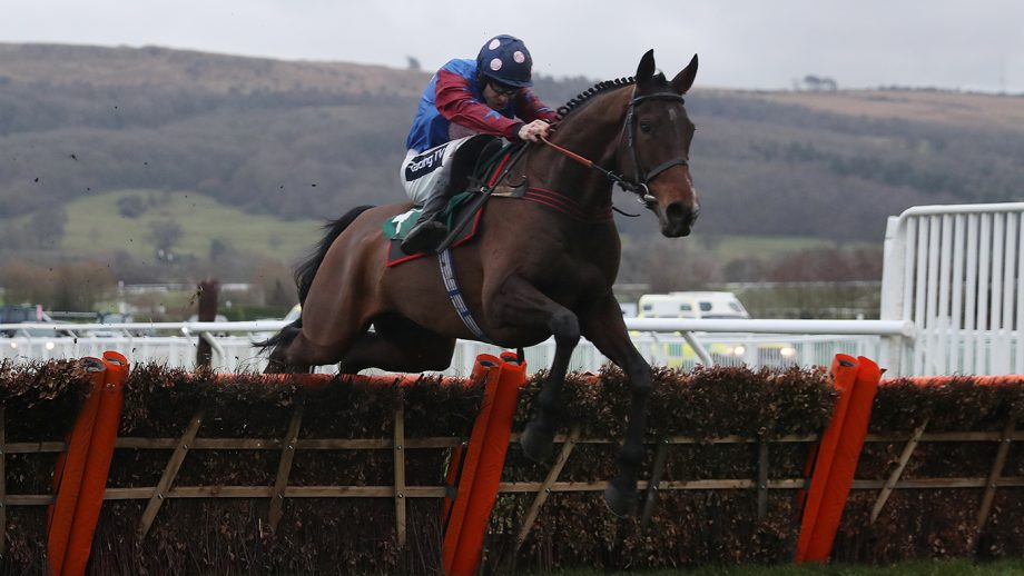 National Hunt horses to follow 2020/21
