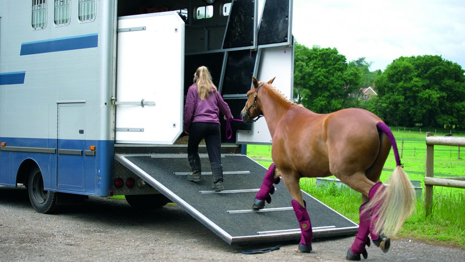 horsebox breakdown advice