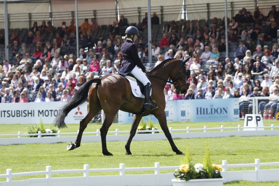 Kate Honey - how to sit deep in canter
