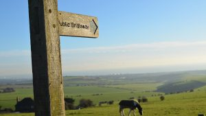 Public bridleway sign on the Sussex Southdowns in England. Image shot in mid December using Nikon D5100 and prime lens.