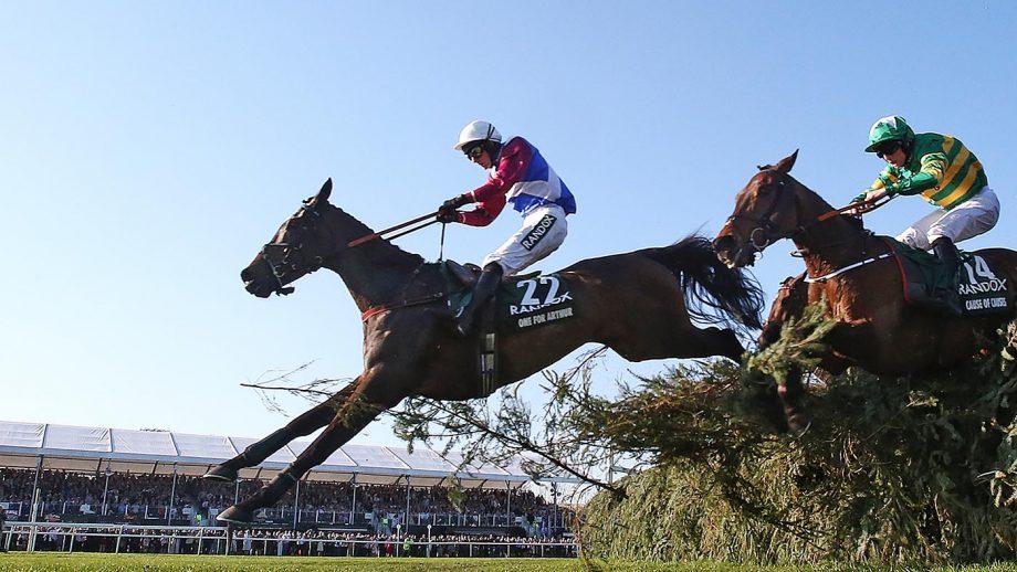 Grand National winner One For Arthur retired