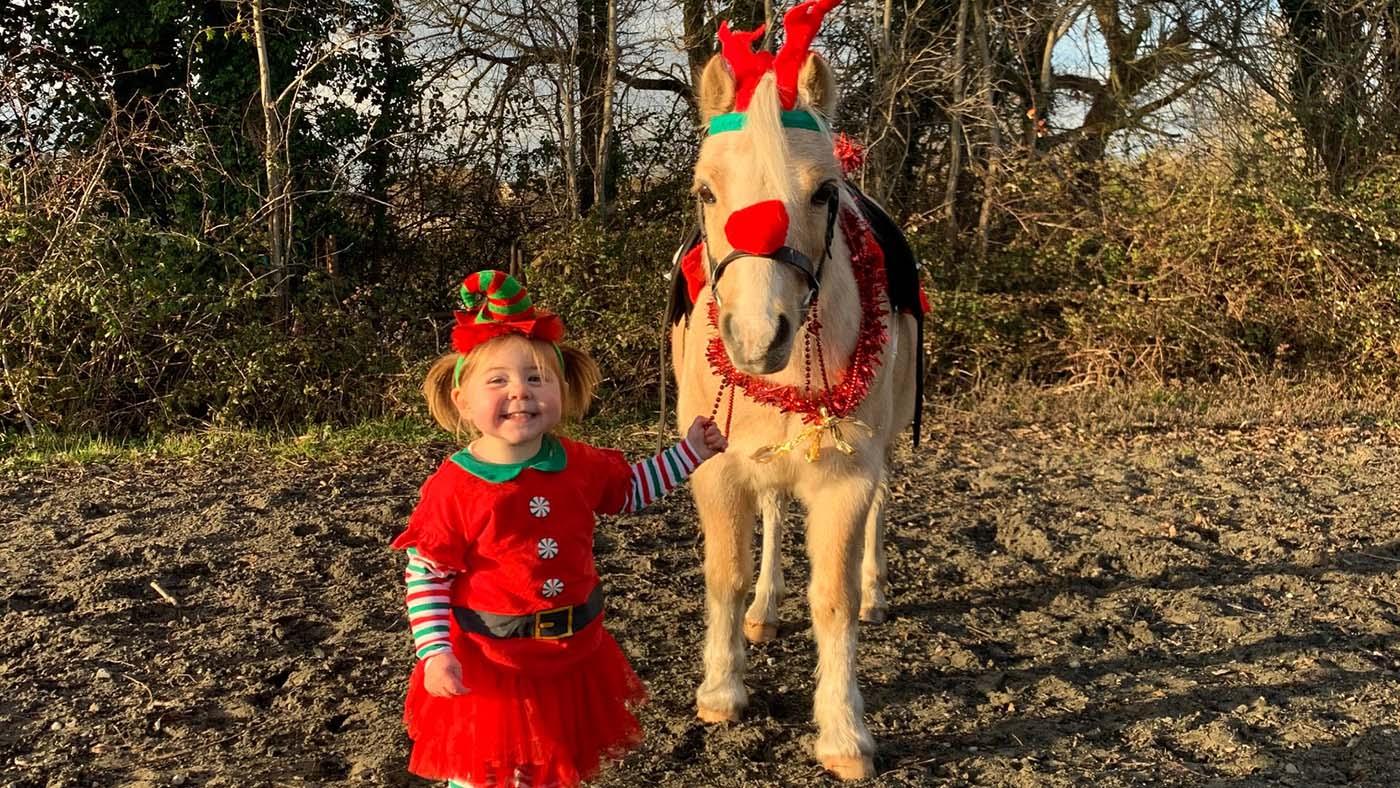 Entre no espírito festivo!  13 ideias de fantasias de Natal para cavaleiros de todas as idades e suas montarias (de rena) 4