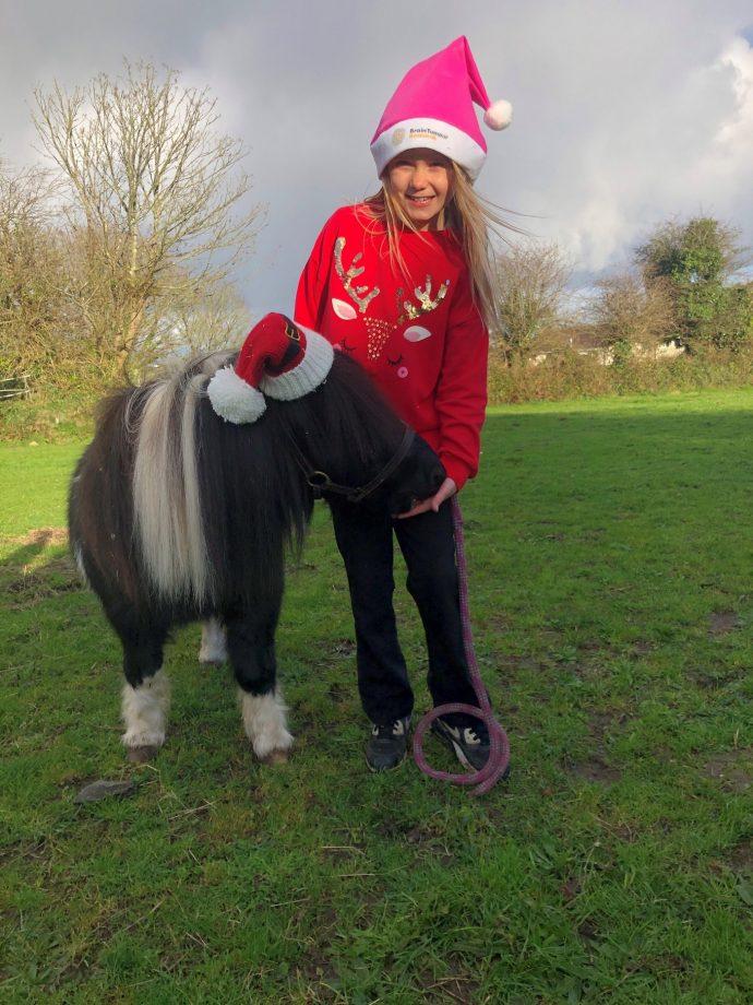 Shetland pony Brain Tumour Research