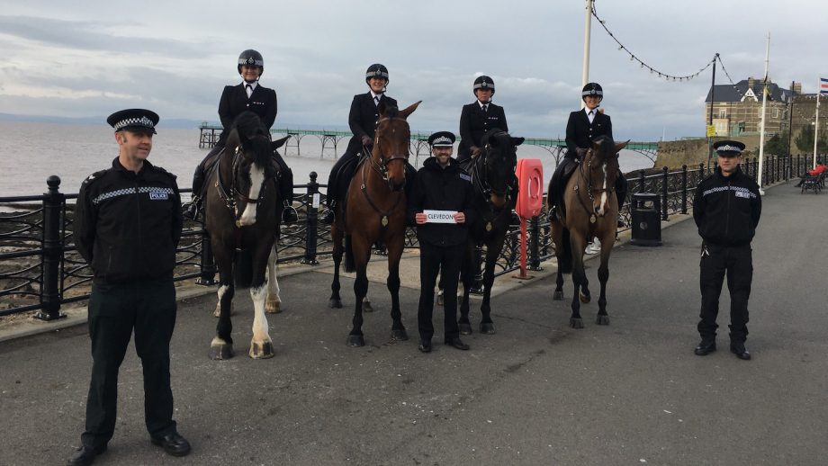 Avon & Somerset Police police horse