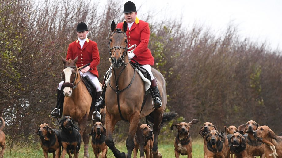 Cranwell Bloodhounds 13.12.20 Frank Goddard ( H/man ) & Chris lightfoot ( Whip )