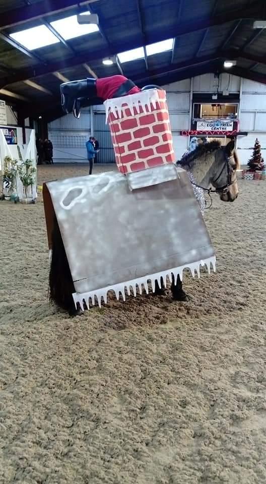 Entre no espírito festivo!  13 ideias de fantasias de Natal para cavaleiros de todas as idades e suas montarias (de rena) 2