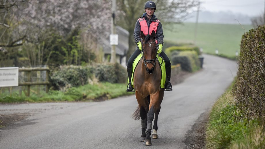 road safety horse riders