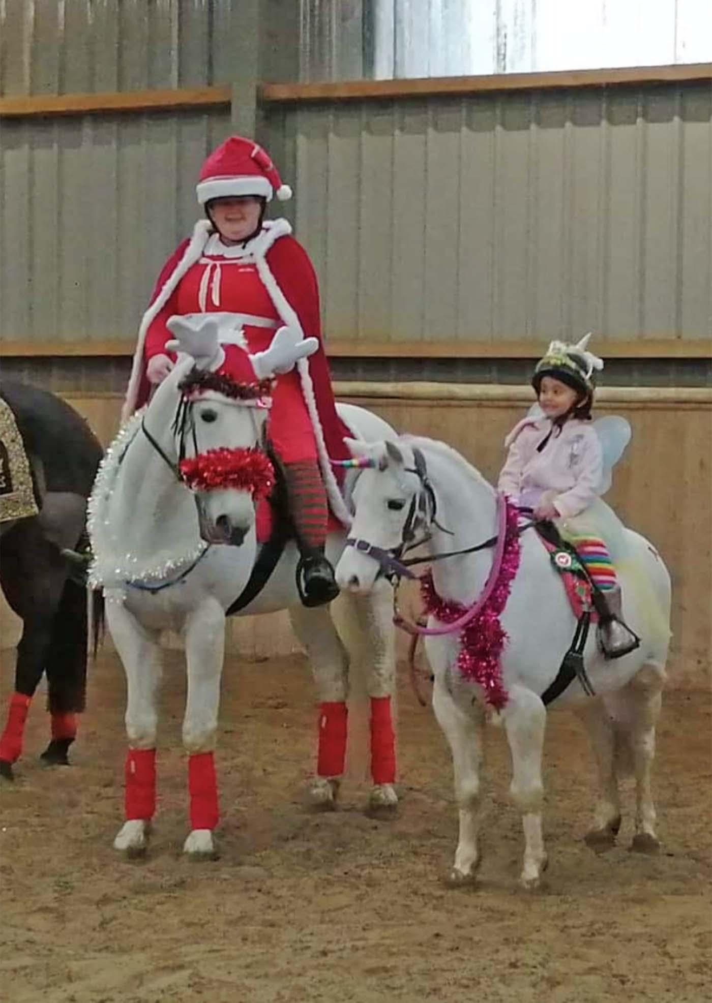 Entre no espírito festivo! 13 ideias de fantasias de Natal para cavaleiros de todas as idades e suas montarias (de rena) 7
