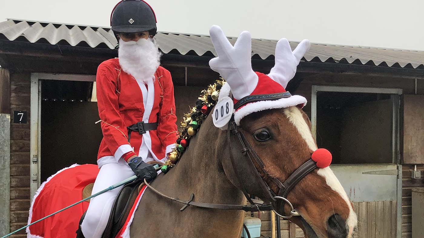 Entre no espírito festivo!  13 ideias de fantasias de Natal para cavaleiros de todas as idades e suas montarias (de rena) 8