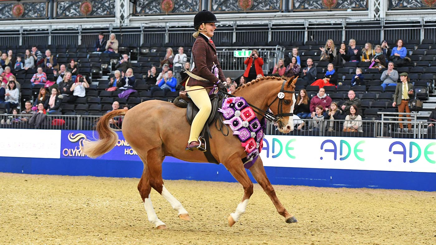 Ssadl Qualifiers 2021 For Veteran Horses To Royal International Finals