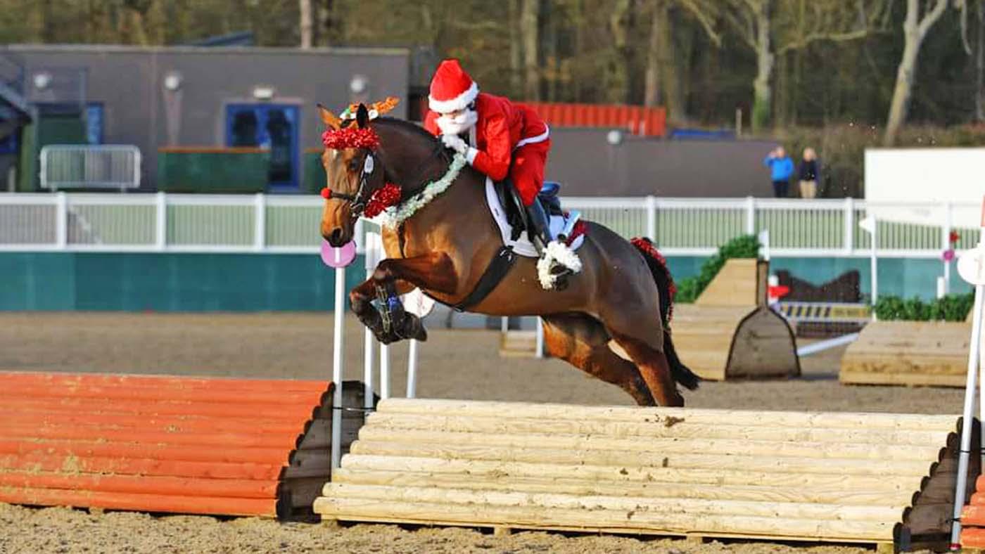 Entre no espírito festivo! 13 ideias de fantasias de Natal para cavaleiros de todas as idades e suas montarias (de rena) 13