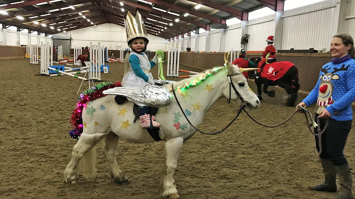 Entre no espírito festivo!  13 ideias de fantasias de Natal para cavaleiros de todas as idades e suas montarias (de rena) 5