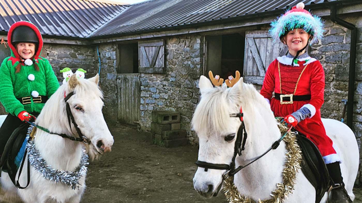 Entre no espírito festivo! 13 ideias de fantasias de Natal para cavaleiros de todas as idades e suas montarias (de rena) 11
