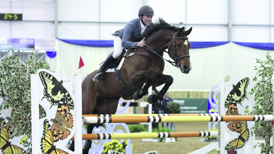 Blue Chip Winter Show Jumping Championships