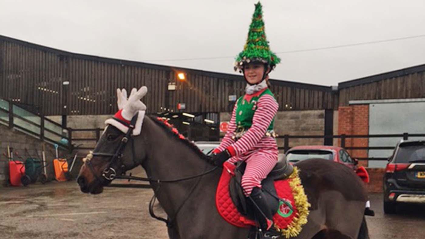Entre no espírito festivo! 13 ideias de fantasias de Natal para cavaleiros de todas as idades e suas montarias (de rena) 12
