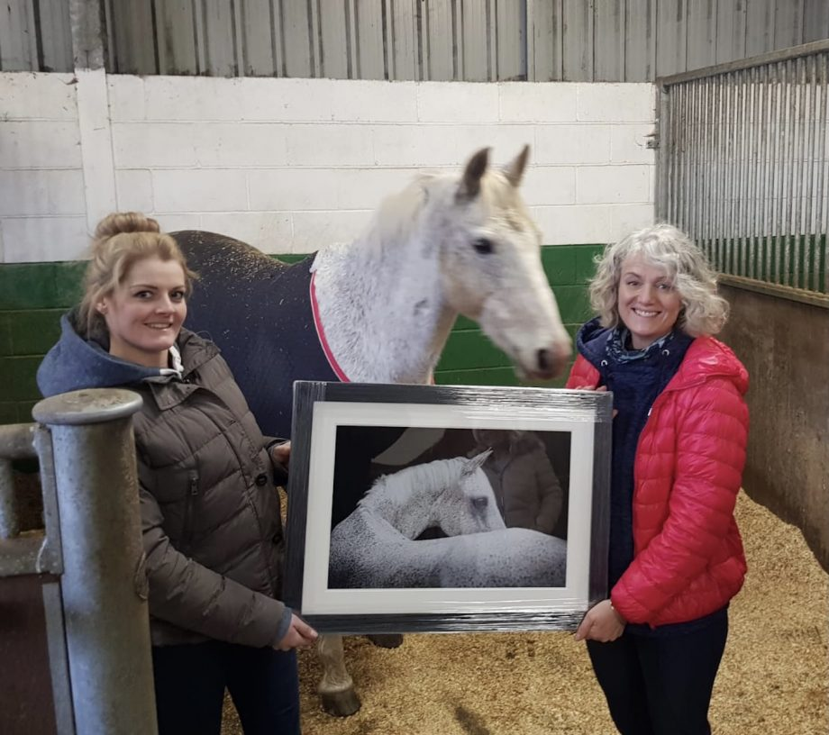 equestrian photographer Helen Speigl Xperience Group Awards