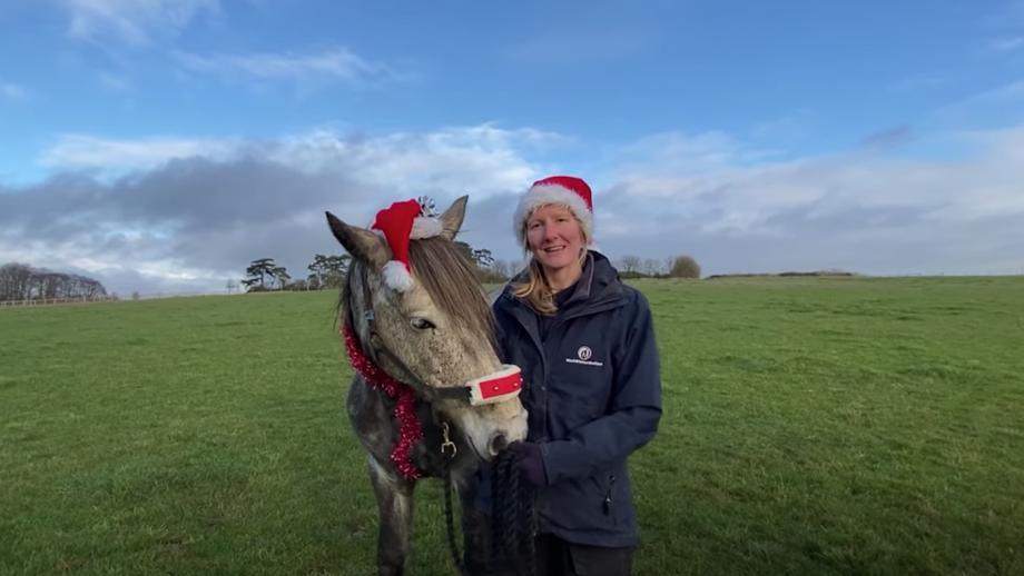 World Horse Welfare Christmas message
