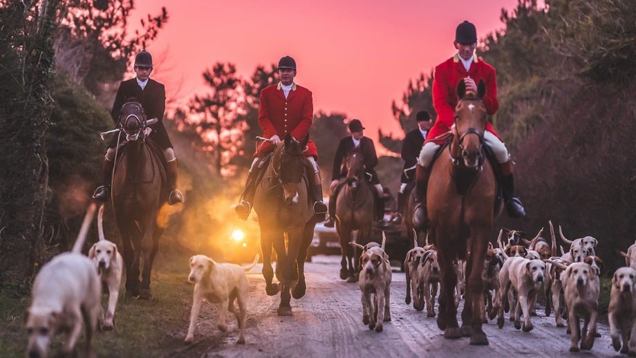 The North Cotswold hounds with kennel-huntsman Guy Fitzearle in front and joint-master and huntsman Oliver Dale