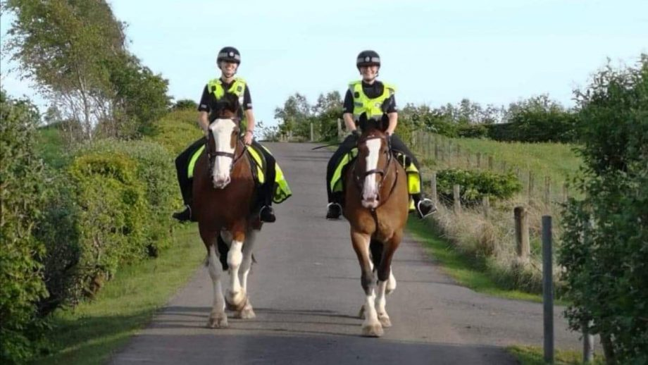 Police horse dies on duty: tributes paid to Police Scotland's Orkney