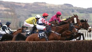 Amateur riders will not take part in the 2021 Cheltenham Festival, owing to coronavirus restrictions