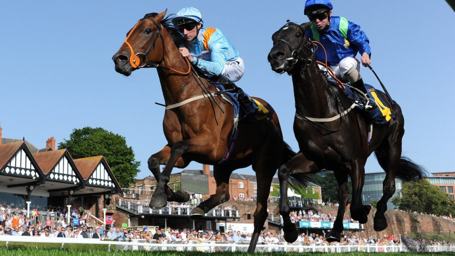 Racecourse Covid testing has been mooted as a way of bringing back fans.