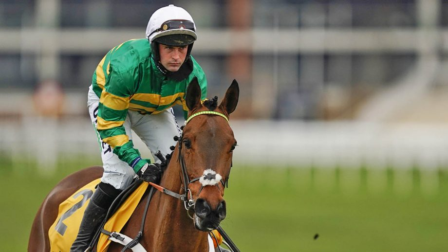 Nico de Boinville riding Champ make their way to the start for The Betfair Game Spirit Chase at Newbury Racecourse on February 21