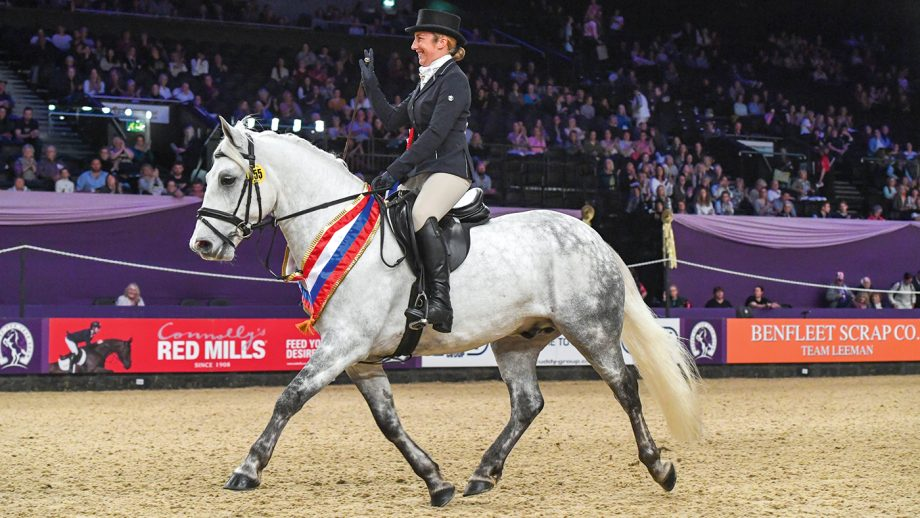 Lisa Sergeant riding LINSFORD EAR TO THE GROUND, winner of the SEIB Search for a Star Championshi during the Horse of The Year Show at the NEC in Birmingham in the UK between the 2nd - 6th October 2019
