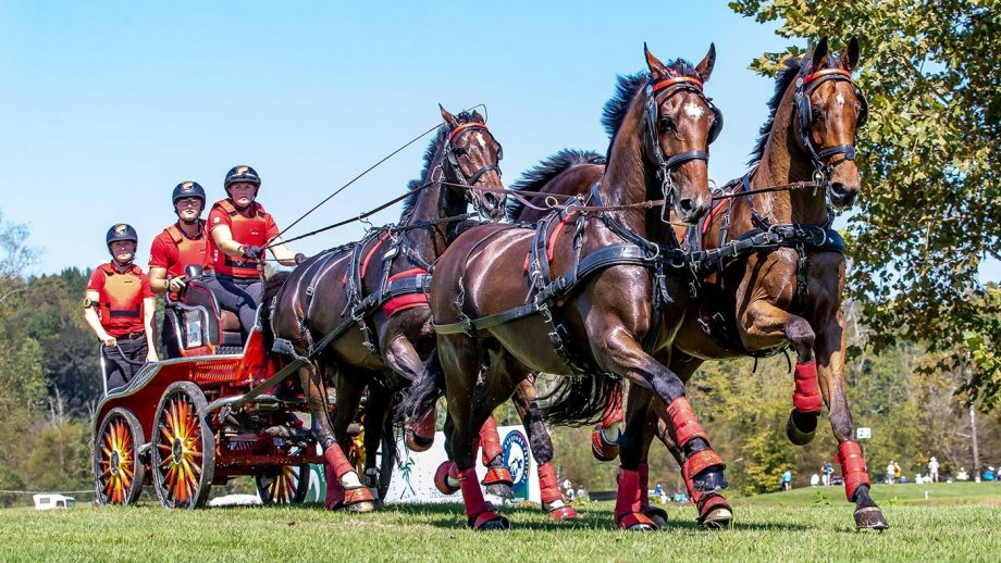 PNPRR2 Tryon, USA. 22nd September 2018. Mareike Harm. GER. FEI World Team and Individual Driving Championships. Day 11. World Equestrian Games. WEG 2018 Tryon. North Carolina. USA. 22/09/2018. Credit: Sport In Pictures/Alamy Live News