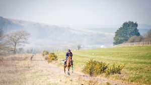Tina riding Paddy's Poem on the gallops at her brother Nick Gifford's racing yard