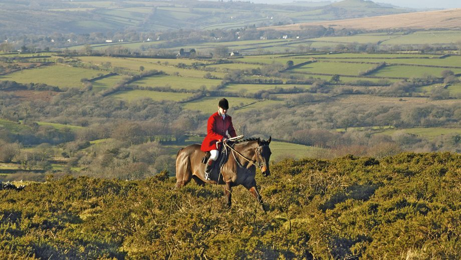 Claire Bellamy at the first draw with Spooners and West Dartmoor Hunt