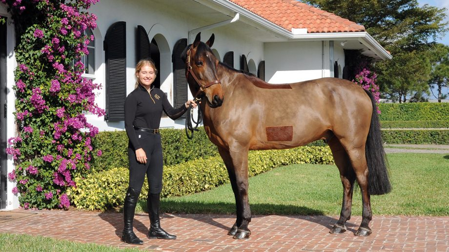 Emily Ward and Millioninmind taking a break on a sunny Florida day in Wellington