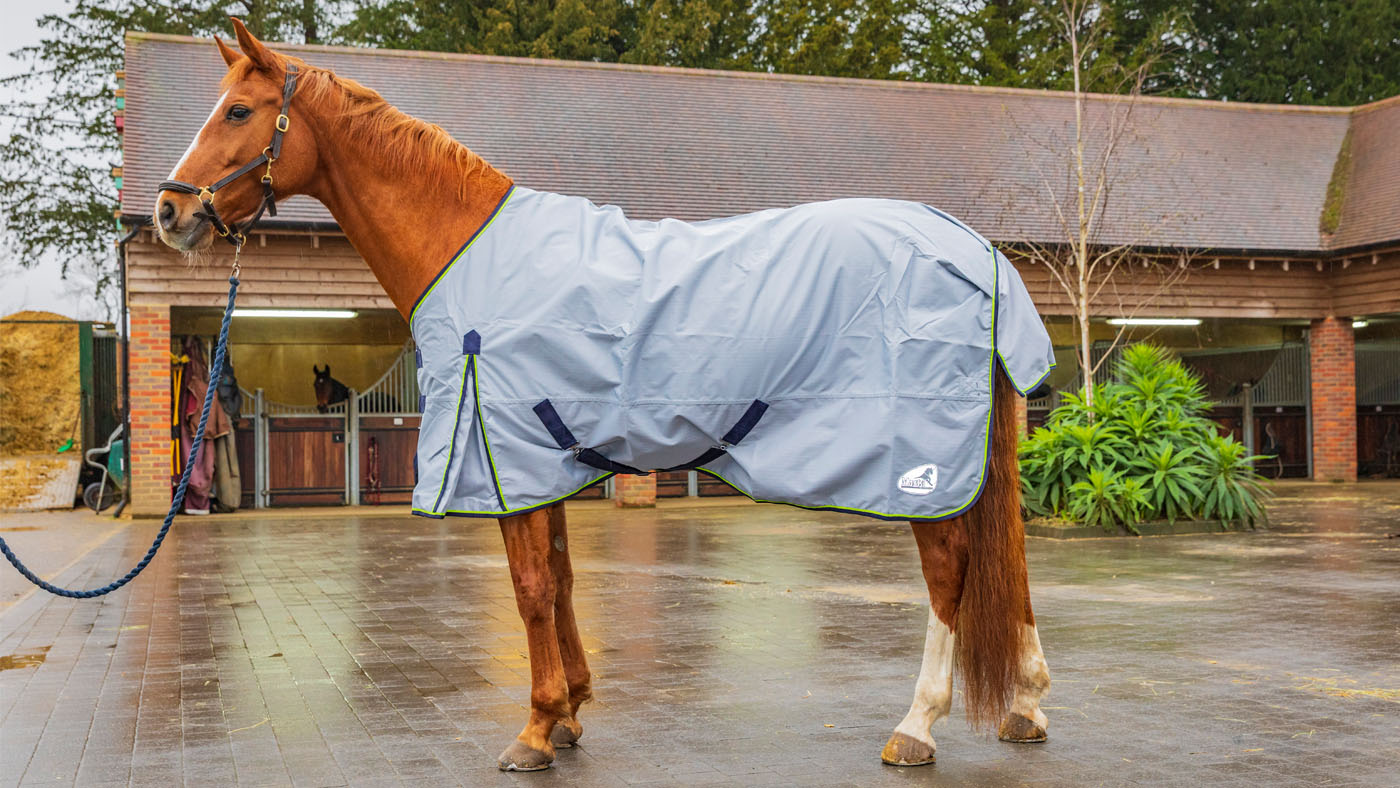 Best Lightweight Turnout Rugs For