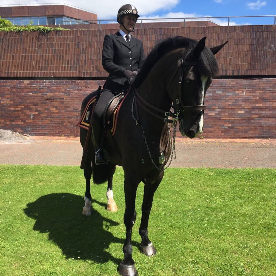 Northumberland Police police horse retires
