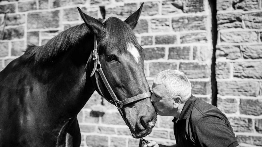 police horse retires South Yorkshire Police