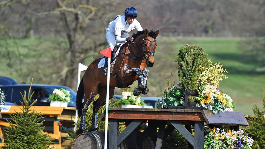 Harry Meade head injury recovery: Tenareze is one of the horses Harry rode at his first event back, Oasby