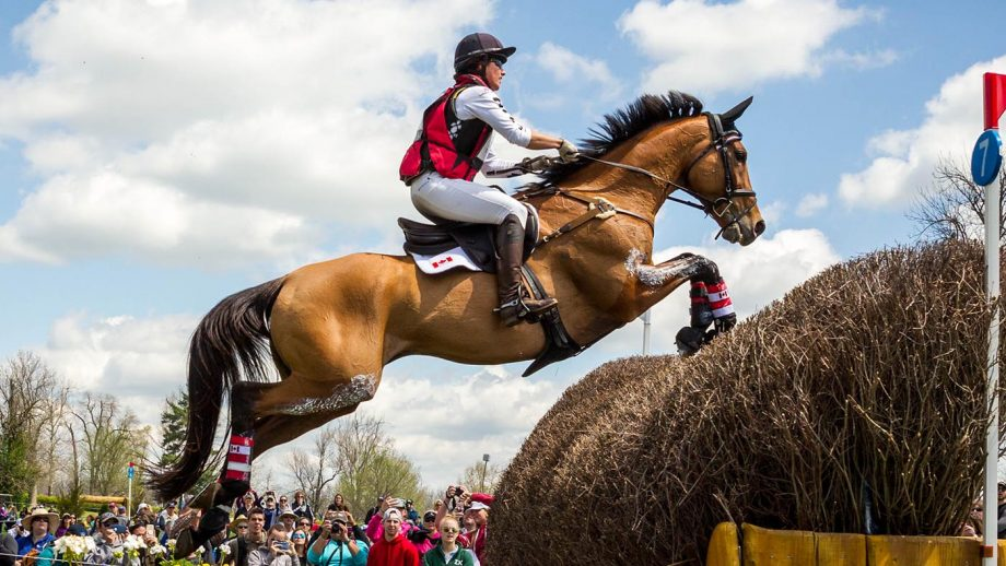 horse retired Kentucky Three-Day Event