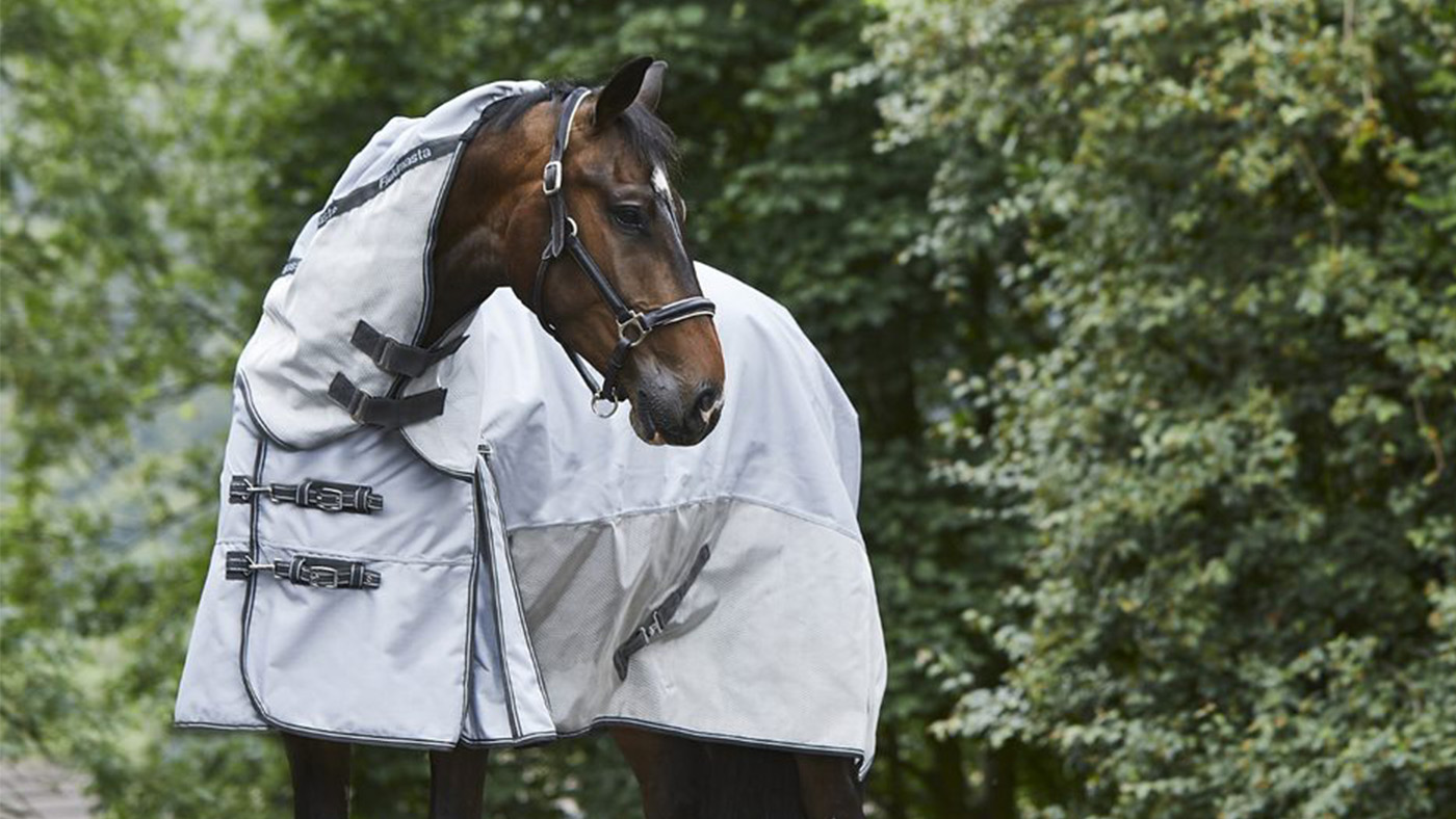 10 Waterproof Fly Rugs Perfect For