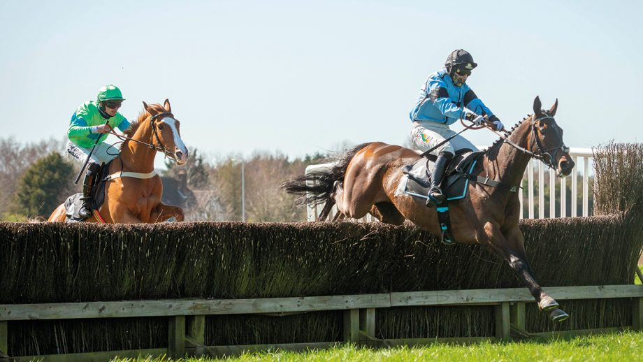 Tattersalls Cheltenham 4&5 year old Maiden - Time PLease and Gina andrews at front