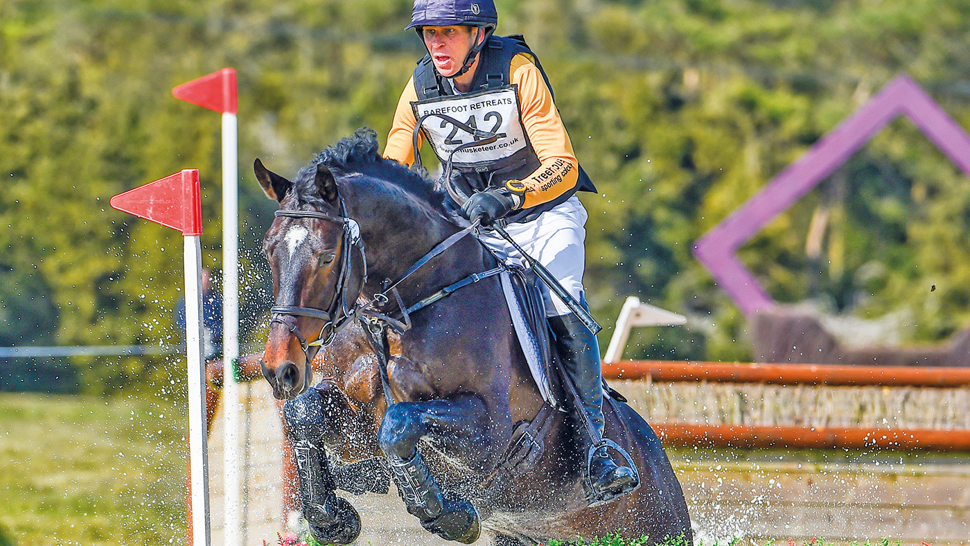 The Archie Legacy: lasting memorial for four event horses killed in road collision