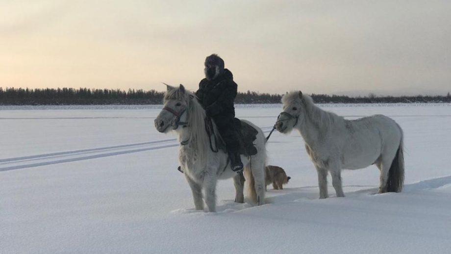 around the world horse trek