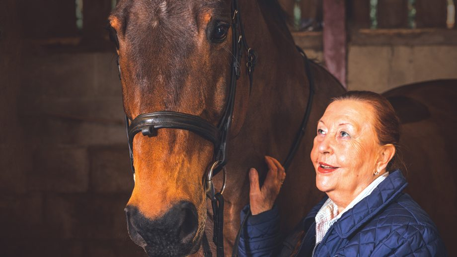 All in A days work - Gaynor - Horse Whisperer_-4