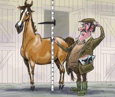 Horse and Hound- Breeder surprise v3