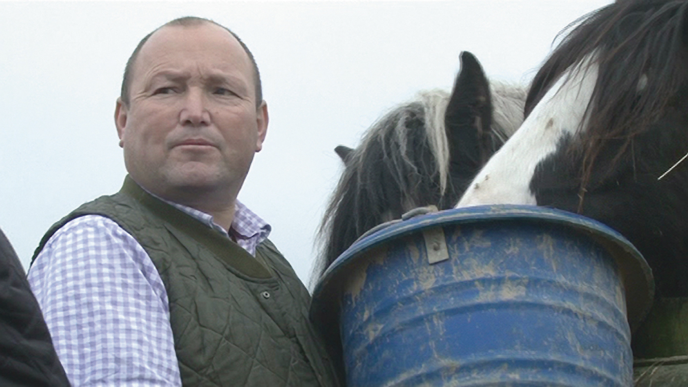 'Horrific' Tom Price case shows need for tougher abuse sentences *H&H Plus* - Horse & Hound