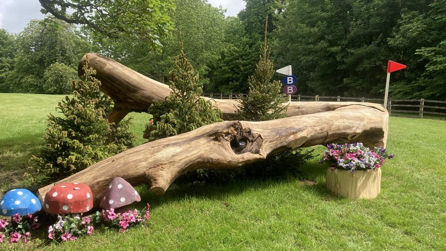 Bicton Horse Trials cross-country course – fence 7b on the CCI4*-S course