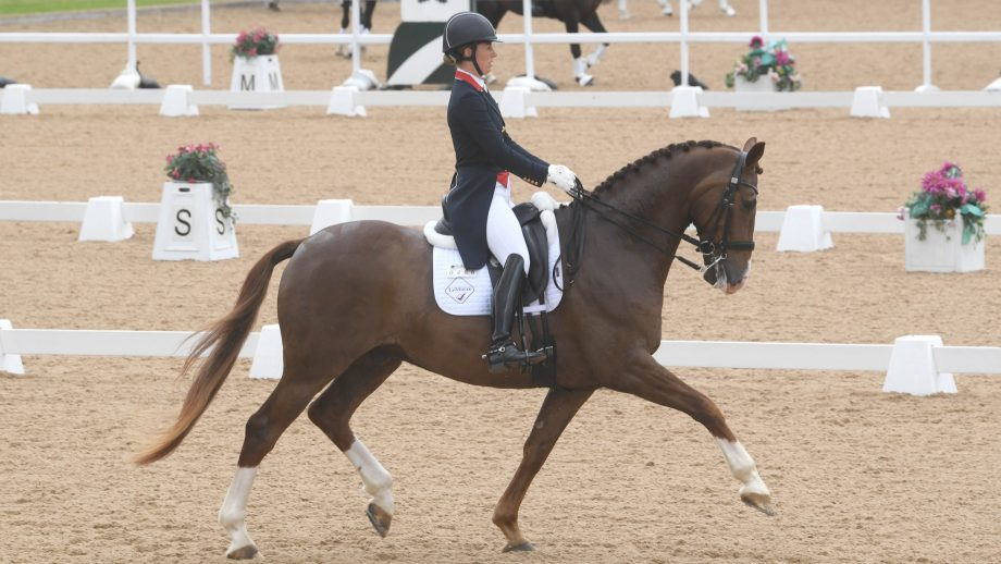 Winter Dressage Championships timetable