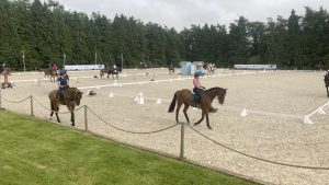 Bicton Horse Trials dressage times